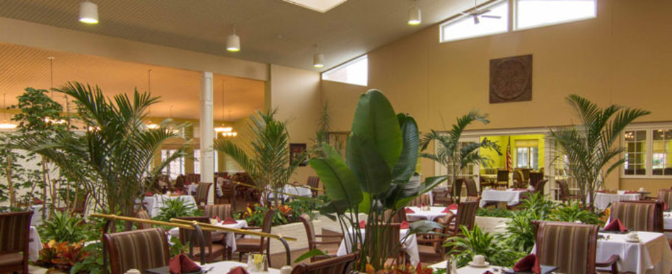 Spacious dining room with large plants