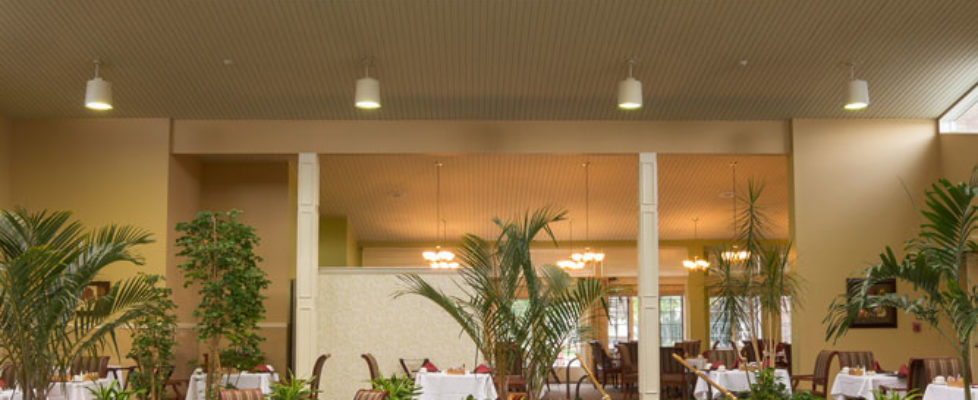 Dining room with high glass ceiling